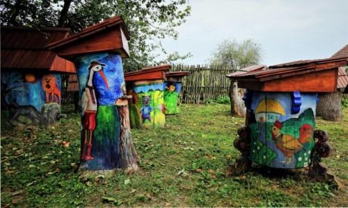 Zdjęcie UKRAINA / Drohobycz / Nahujowice (ukr. Нагуєвичі)  / Ule - każdy z innej bajki