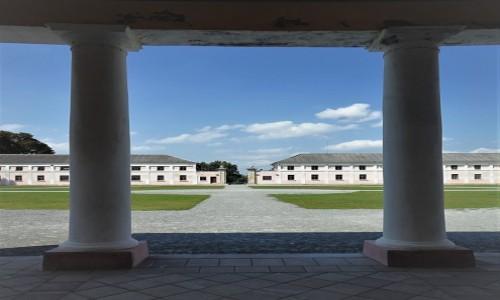 Zdjęcie UKRAINA / Obwód Tarnopolski / Pałac Wiśniowieckich i Mniszchów  / Widok na dziedziniec