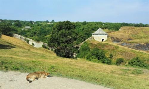 Zdjęcie UKRAINA / Czerniowce  / Zamek w Chocimiu / Na strazy