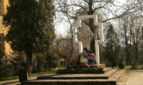 Zdjecie UKRAINA / Ukraina Zachodnia / Drohobycz / drohobycka Pieta