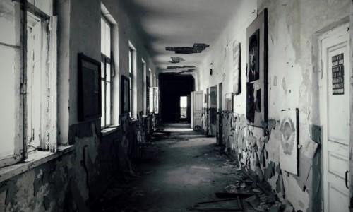 Zdjęcie UKRAINA / obwód Kijowski / Czarnobyl/Prypeć / Czarnobyl