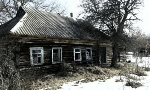 Zdjęcie UKRAINA / obwód Kijowski / Czarnobyl/Prypeć / Maszewo-opuszczona wioska