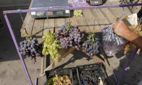 Zdjecie UKRAINA / Obwód zaporoski / Berdiańsk / Miejscowe winogrona na targu w Berdiańsku