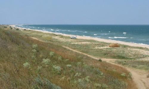 Zdjęcie UKRAINA / Krym / Mierzeja Arabacka / Mierzeja Arabacka - plaża i parking po horyzont