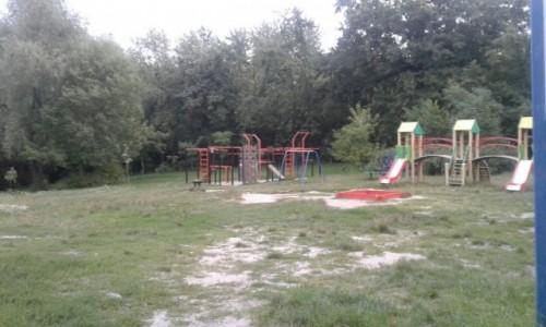 Zdjecie UKRAINA / Kijów / Park Nywki / Park Nywki-3
