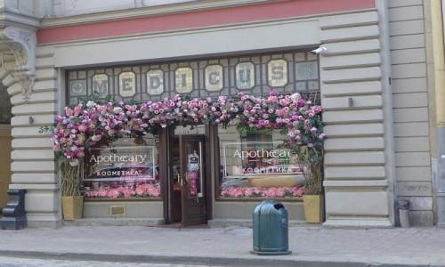 Zdjecie UKRAINA / Lwów / Lwów / Ciekawa dekoracja sklepu