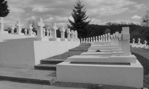 Zdjęcie UKRAINA / brak / Lwów / cmentarz Orląt
