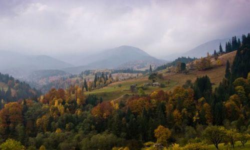 Zdjęcie UKRAINA / Czarnohora / Bystrec / Jesień w Karpatach