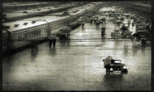 Zdjecie UKRAINA / - / Ukraina / Rain