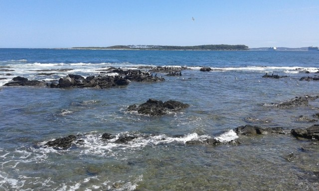 Zdjęcia: Punta del Este, Maldonado, Punta del Este 4, URUGWAJ