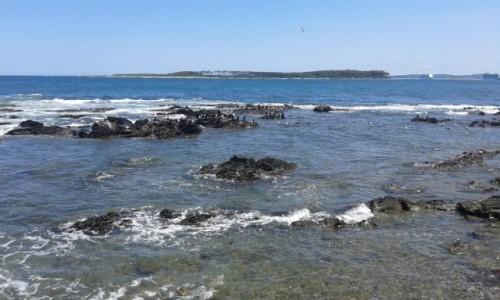 Zdjecie URUGWAJ / Maldonado / Punta del Este / Punta del Este 4
