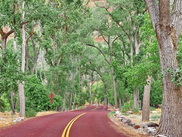 Zdjęcia: Zion NP, Utah, Droga przez Zion, USA