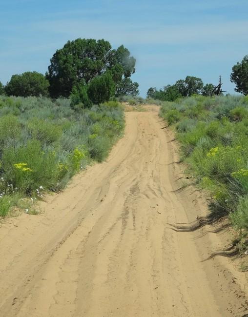 Zdjęcia: White Pocket, Arizona, Vermilion Cliffs, Droga do White Pocket, USA