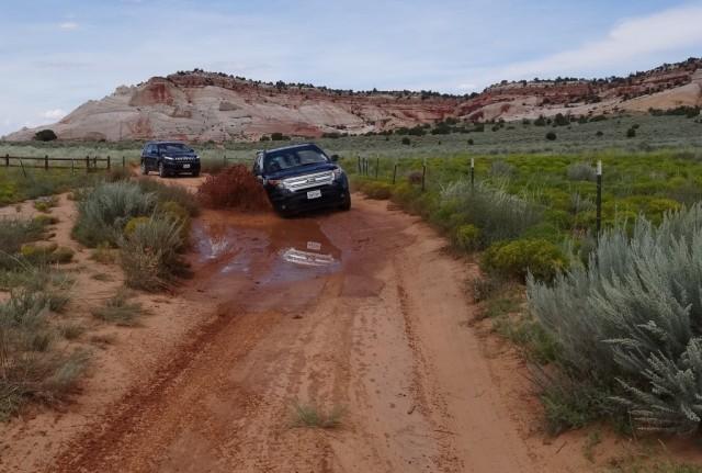 Zdjęcia: White Pocket, Arizona, Vermilion Cliffs, Droga pod White Pocket, USA