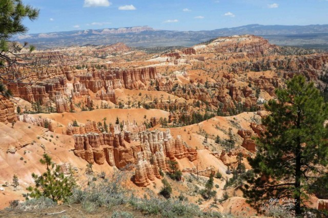 Zdjęcia: Park narodowy Bryce Canyon, Utah, Kamienna armia, USA