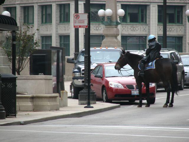 Zdjęcia: Cicago, Illinois, Chicago - scenka rodzajowa pt. mandacik, USA