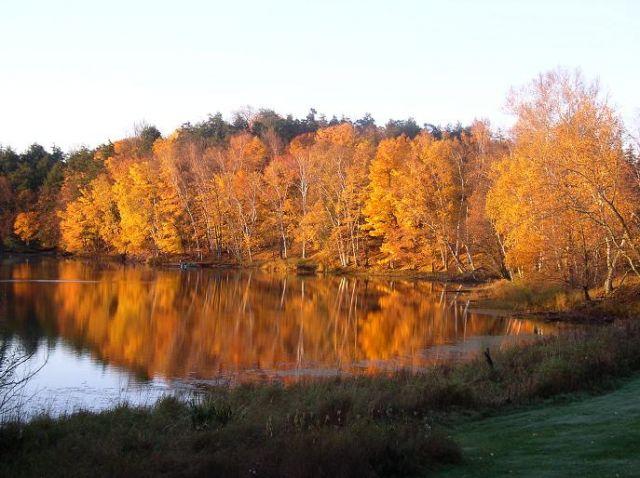 Zdjęcia: Wisconsin, Wisconsin, Mason Lake Resort, USA