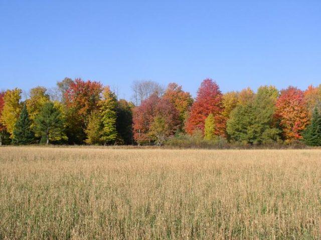 Zdjęcia: Wisconsin, Wisconsin, jesień w Stanach, USA