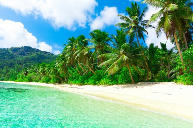 Zdjęcia:   , Hawaje, Hawaje, USA
