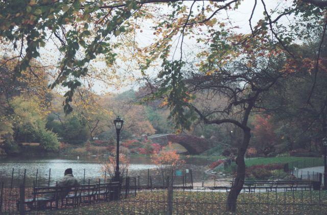 Zdj�cia: Central Park, New York City, jesie� w Nowym Jorku, USA