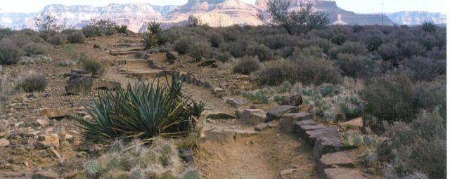 Zdjęcia: Grand Canyon, Grand Caynon, USA
