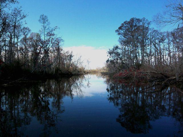 Zdj�cia: delta Mississippi, slepa uliczka, USA