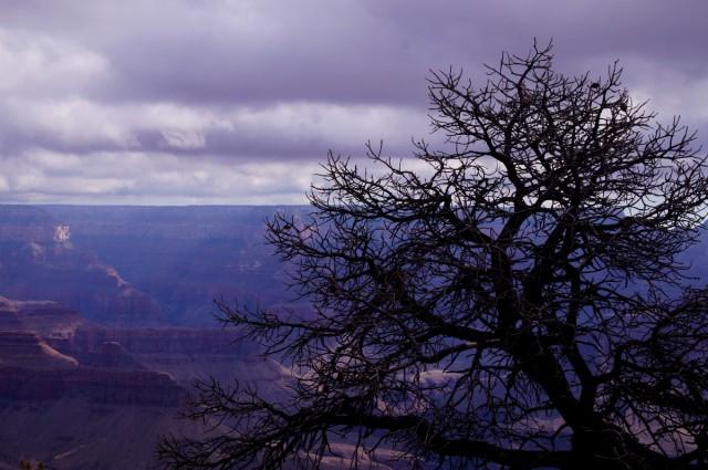Zdjęcia: Wielki Kanion , Arizona, South Rim, USA