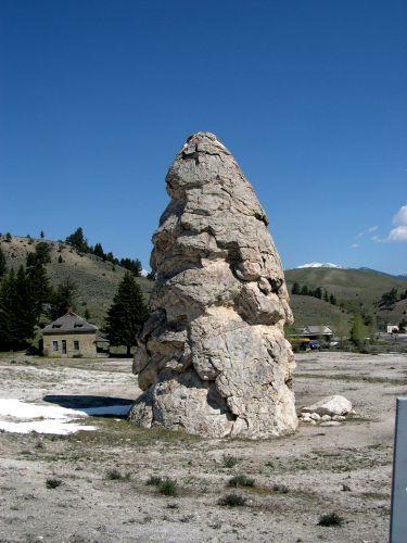 """Zdjęcia: Wyoming, """"szpikulec"""" w Yellowstone, USA"""