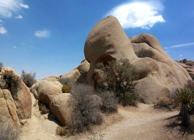 Zdjęcia: Kalifornia, przydrozna skalka czaszka, USA