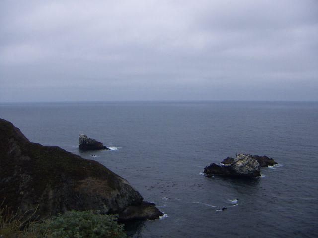 Zdjęcia: San Francisco, zachodnie wybrzeże, Przyroda Zachodniego Wybrzeża, USA
