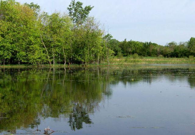 Zdj�cia: Illinois , Silver Spring State Park, USA