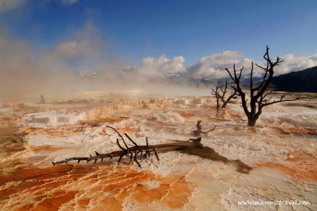 Zdjęcia: Yellowstone, Wyoming, gorace żródła, USA