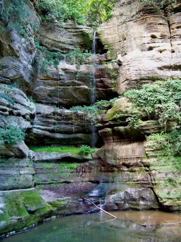 Zdjęcia: Illinois , Wildcat Canyon  widziany z dolu, USA