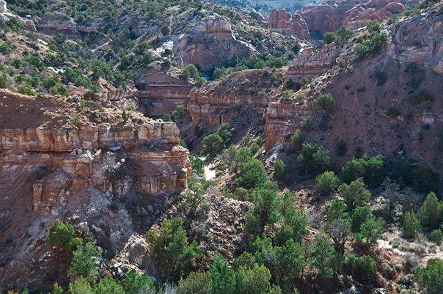 Zdjęcia: Arizona, Arizona, gdzieś w arizonie 7, USA