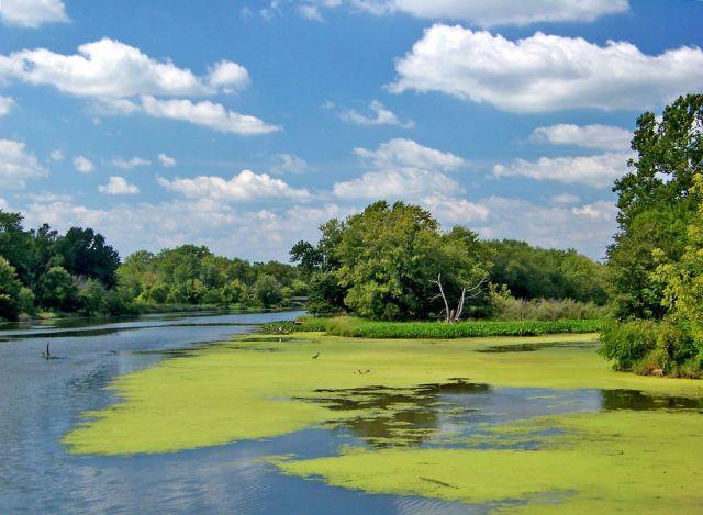 Zdj�cia: Illinois / Channahon, Des Plaines River, USA
