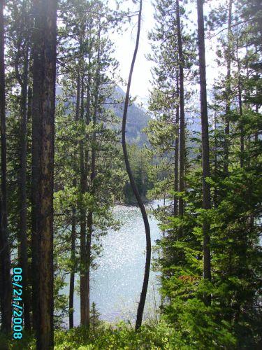 Zdj�cia: nad jeziorem Jackson, Wyoming, Park Grand Teton, USA