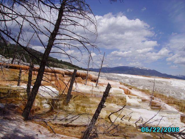 Zdjęcia: Mamoth Hot Springs, Wyoming, Park Yellowstone, USA