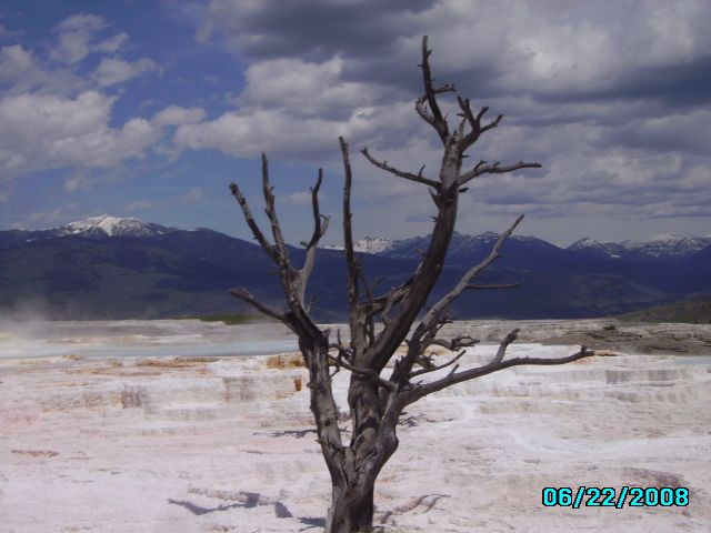 Zdjęcia: Mamoth Hot Sprngs, Wyoming, Park Yellowstone, USA