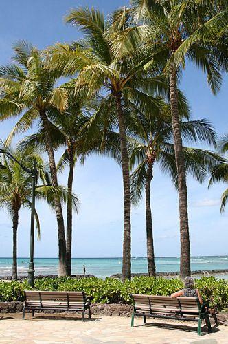 Zdjęcia: Wyspa Oahu, Hawaje, Waikiki Beach II, USA