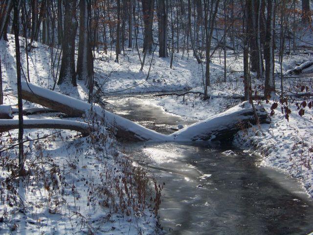 Zdjęcia: Illinois / Utica, Wspomnienie zimy, USA