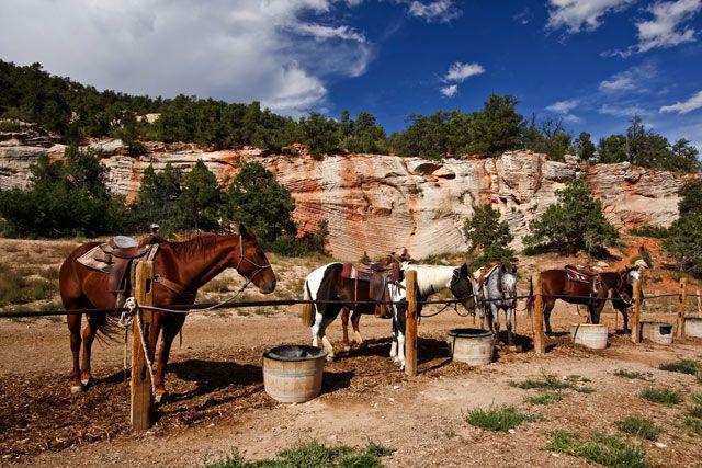 Zdjęcia: niedaleko Zion NP, stan Utah, ., USA