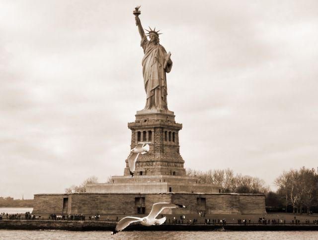 Zdjęcia: NYC, NY, Mewy nad Liberty Island, USA