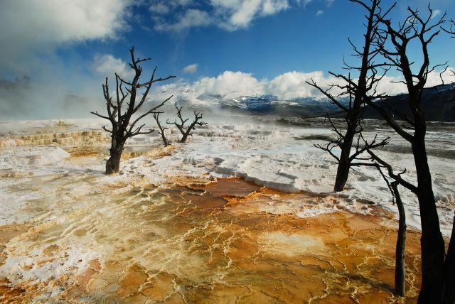 Zdjęcia: Mammoth hot springs, Wyoming, YELLOWSTONE, USA