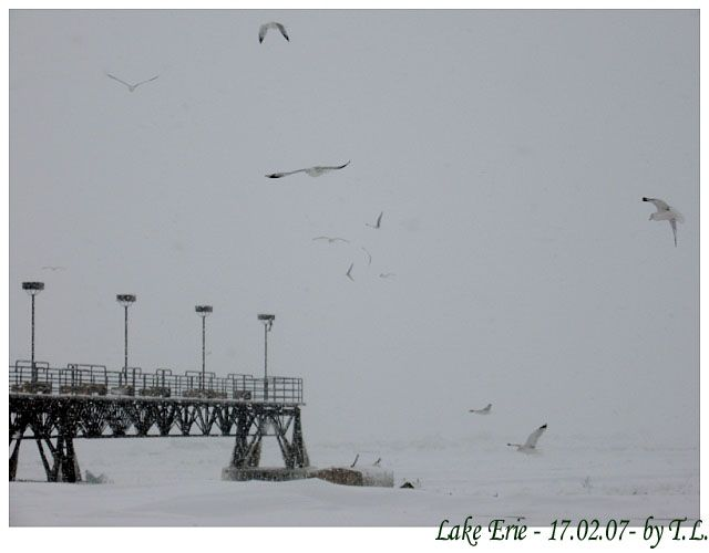 Zdjęcia: Cleveland, Jezioro Erie, Zima nad Erie 2, USA
