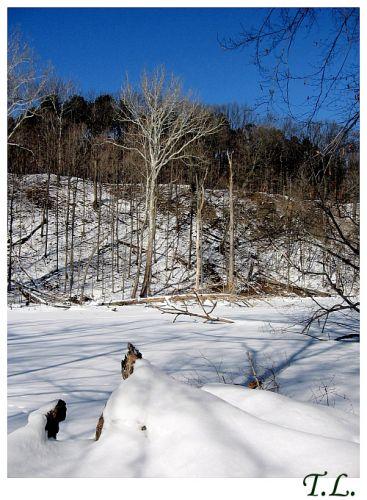 Zdjęcia: Cleveland, Rocky River, Zima nad Rocky River 3, USA