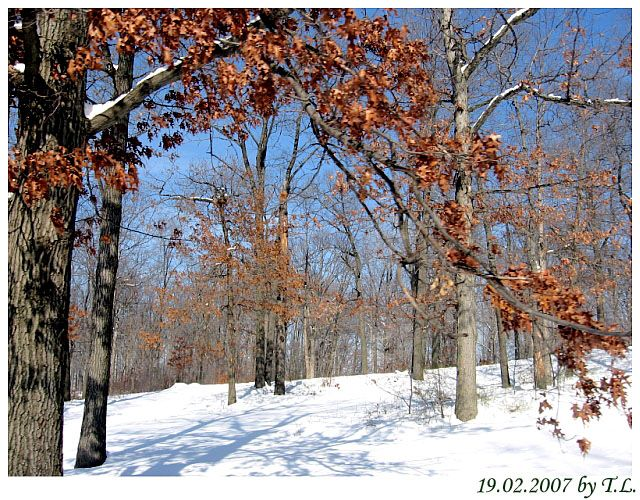 Zdjęcia: Cleveland, Cuyahoga, Cleveland Metropolitan Park 3, USA