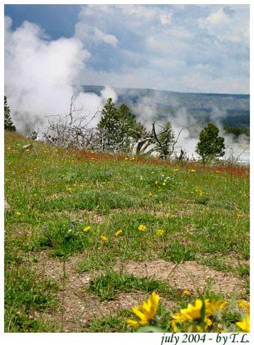 Zdjęcia: Yellowstone NP, Yellowstone NP, USA