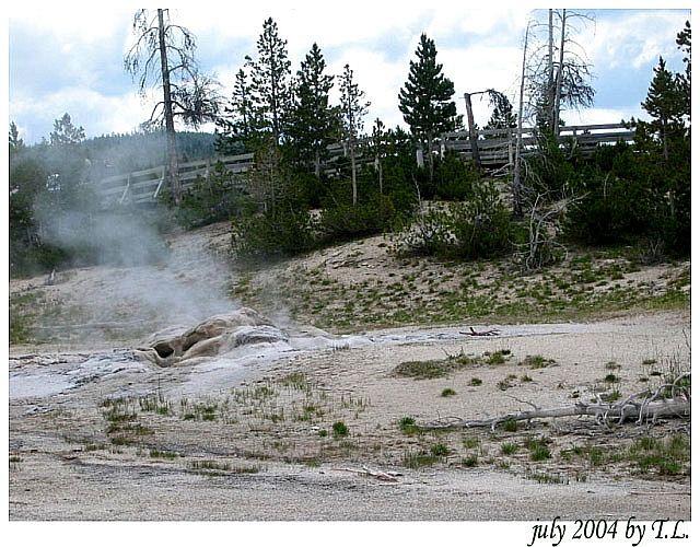 Zdjęcia: Yellowstone NP, Yellowstone NP (3), USA