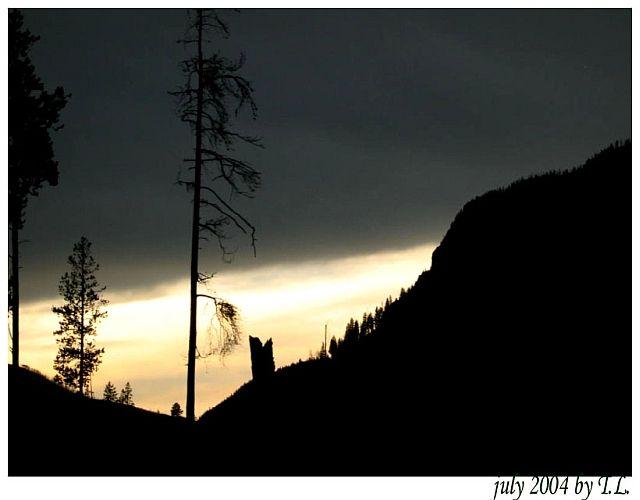 Zdjęcia: Yellowstone NP,  Yellowstone NP (5), USA
