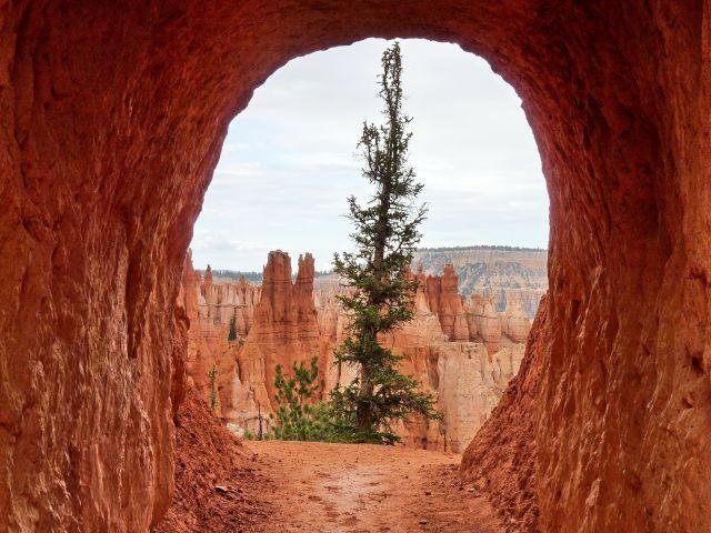 Zdjęcia: Bryce NP, Utah, Wyjście w czerwony krajobraz - konkurs, USA